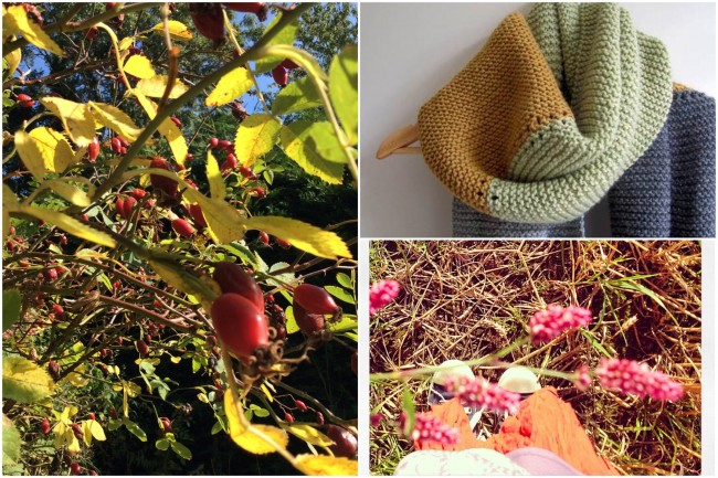 Autumn Collage 2