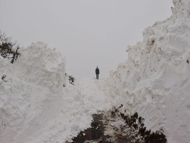 #snowday #thebigfreeze #madewithloops.co.uk